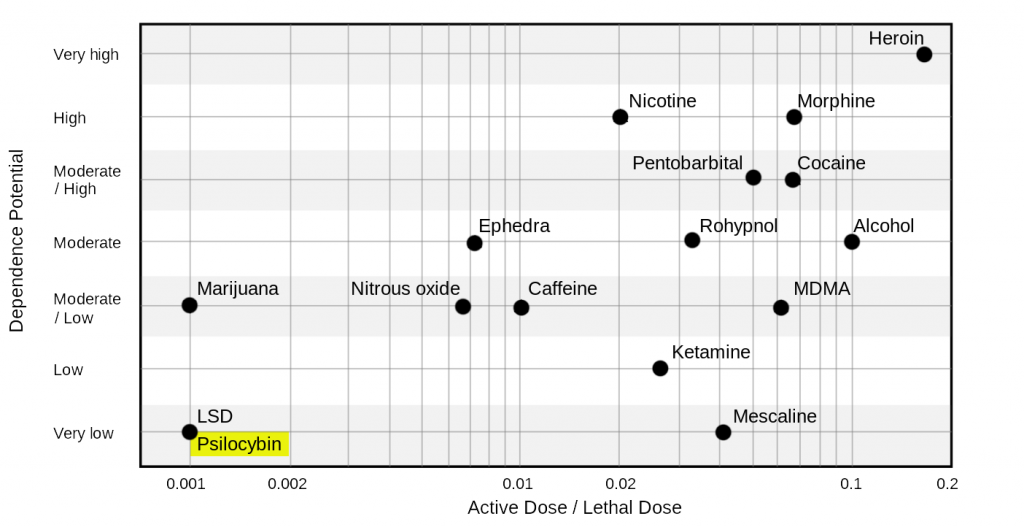 Danger of drugs risk and addiction psilocybin