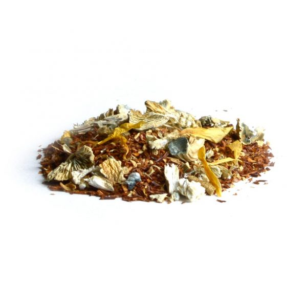 Ginger Magic mushroom tea